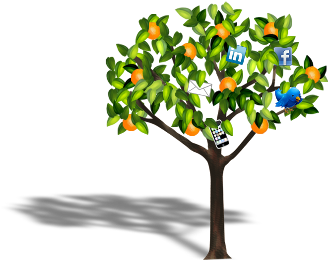 Click orange tree icons for Fresh Picked Facebook, LinkedIn or Email.